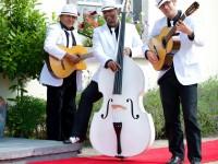 The-Havana-Club-Trio-wedding-music-ireland-2